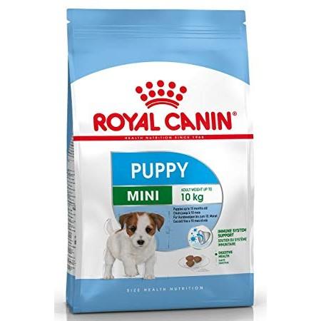 Royal Canin Mini Junior sausas maistas šunims